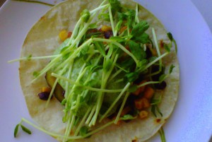 Vegetable Tostada with Arugula-Cilantro Crema